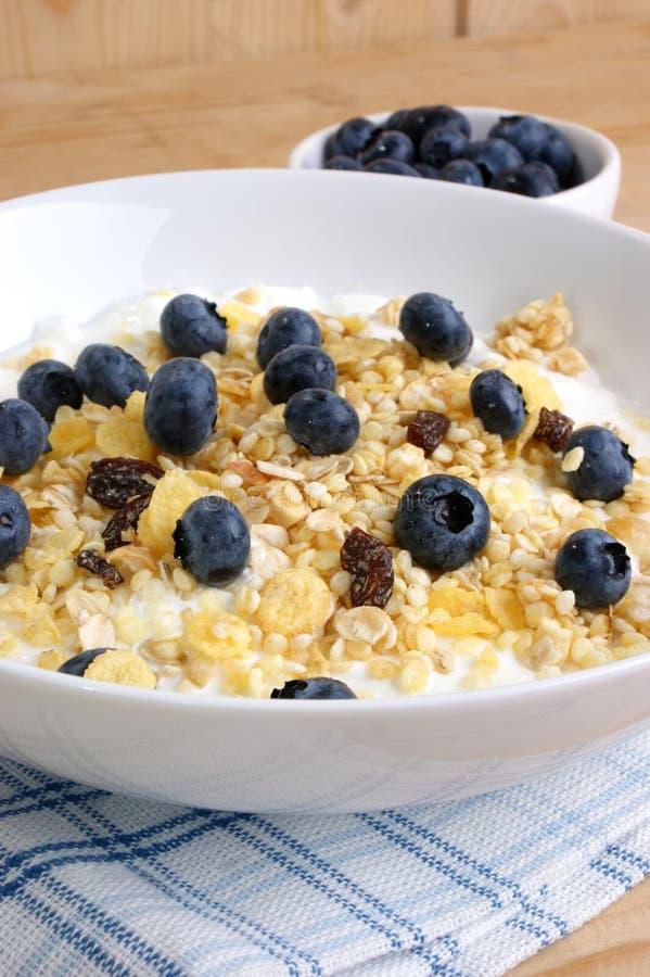 Cereal com leite fotografia de stock