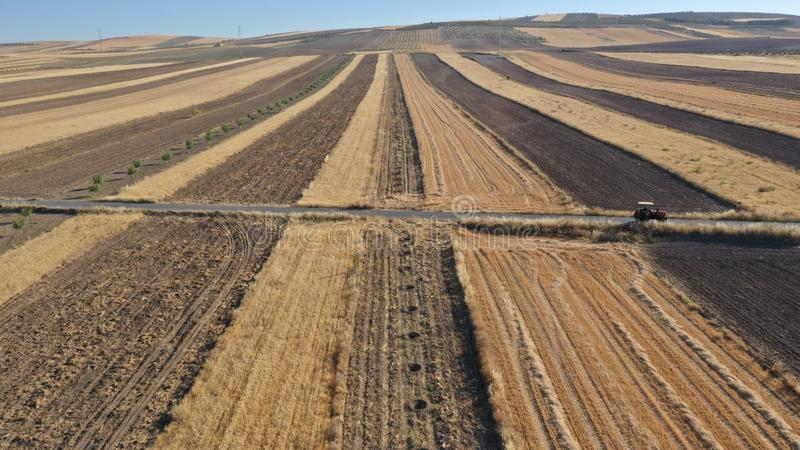 Cereal countryside in Granada with a tractor in view of drone royalty free stock image