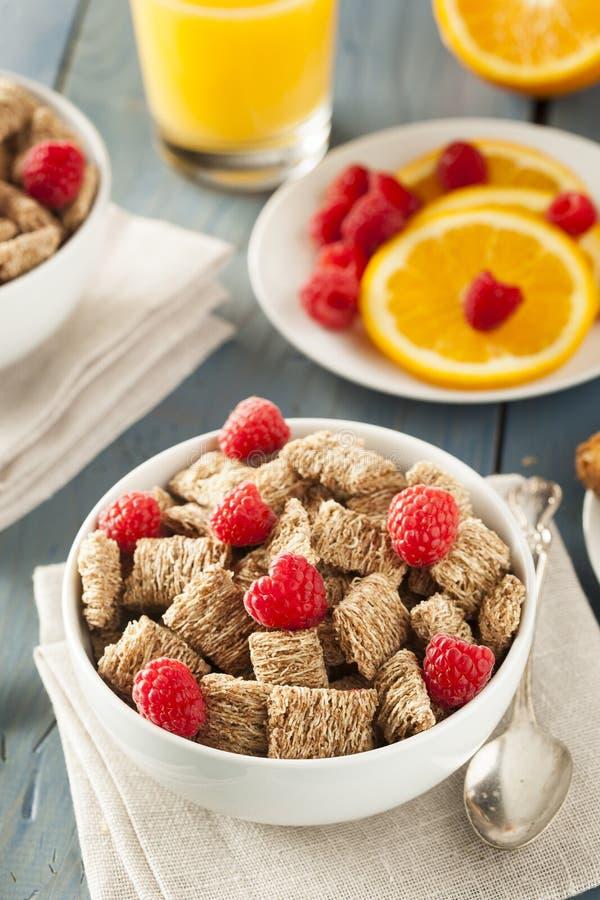 Cereal destrozado trigo integral sano foto de archivo libre de regalías