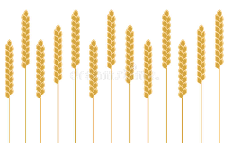 Cereal do trigo do fundo ilustração stock