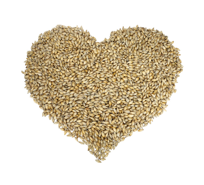 Cereal heart. Barley in the form of a heart royalty free stock image