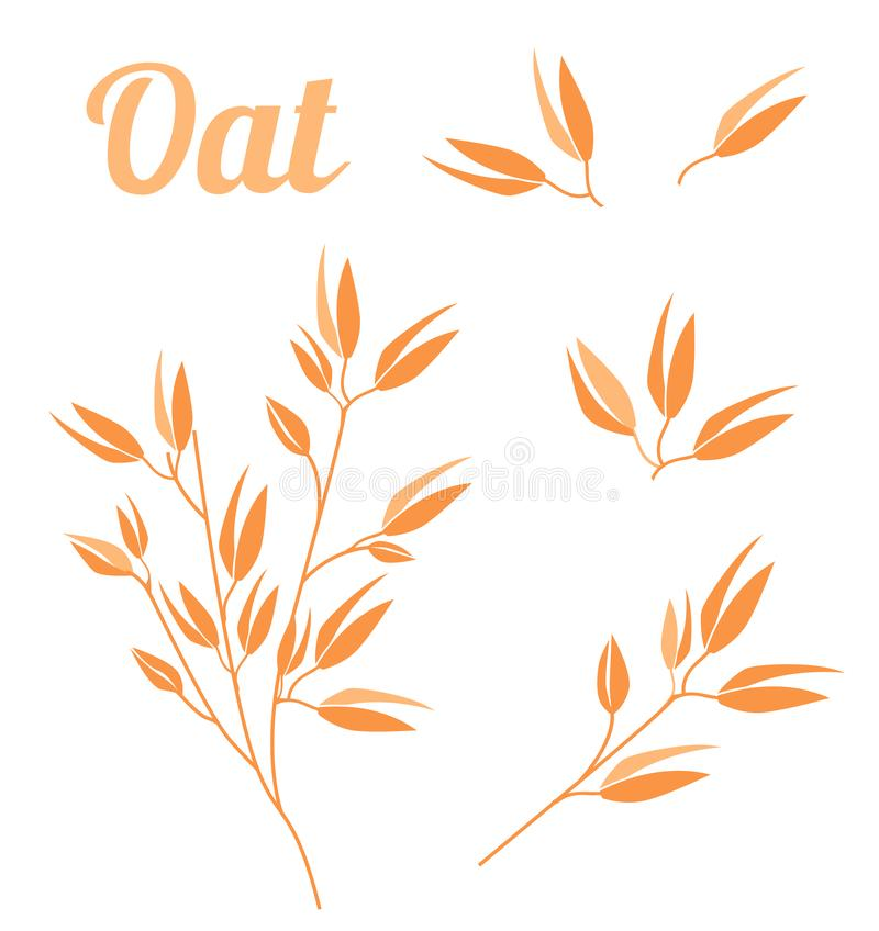 Cereal plants, agriculture industry organic crop products for oat groats flakes, oatmeal packaging design. Vector icons isolated on white background vector illustration