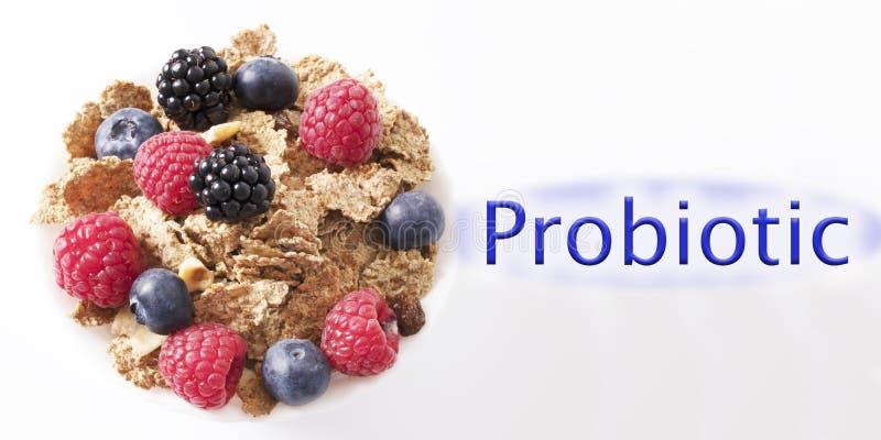 Cereal probiótico imagens de stock