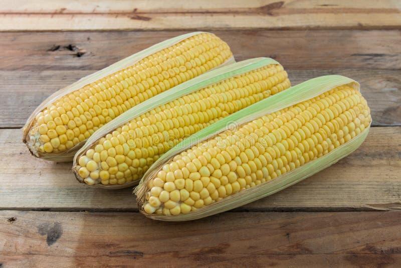 Download Cereale immagine stock. Immagine di grezzo, fogli, pannocchia - 55359669