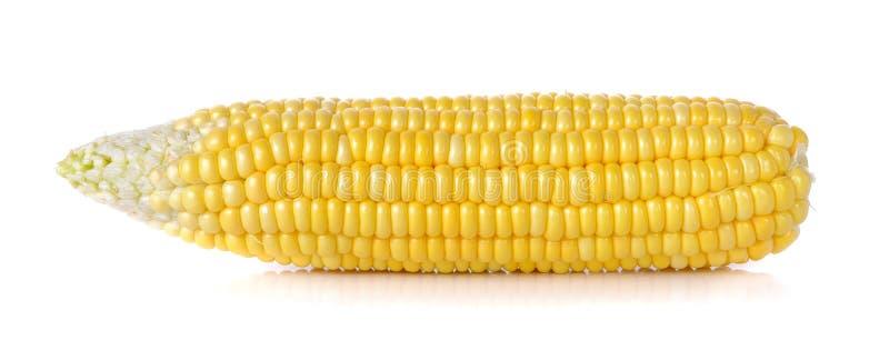 Cereale crudo sui precedenti bianchi fotografia stock libera da diritti