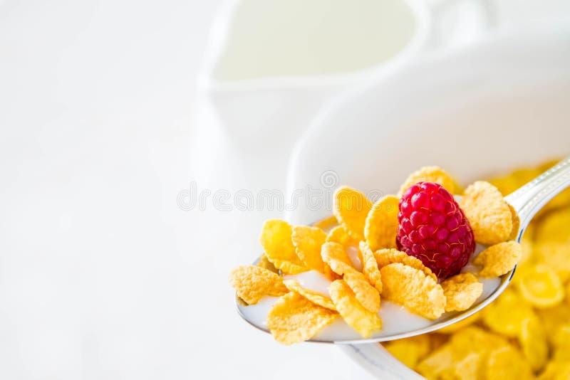 Cereale in cucchiaio fotografia stock