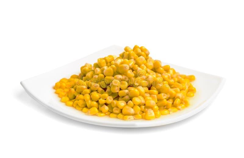 Cereale cucinato sul piatto fotografia stock libera da diritti