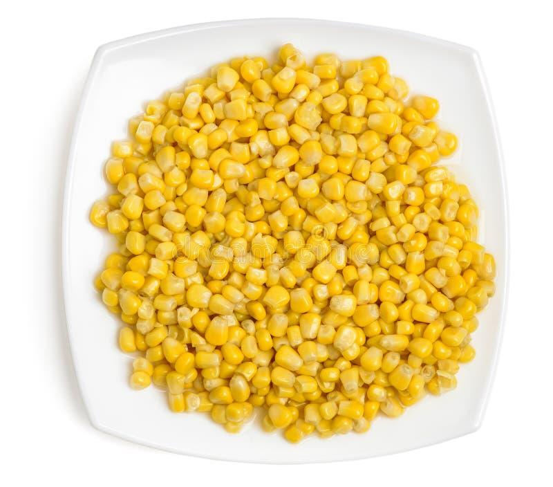 Cereale cucinato sul piatto immagine stock libera da diritti