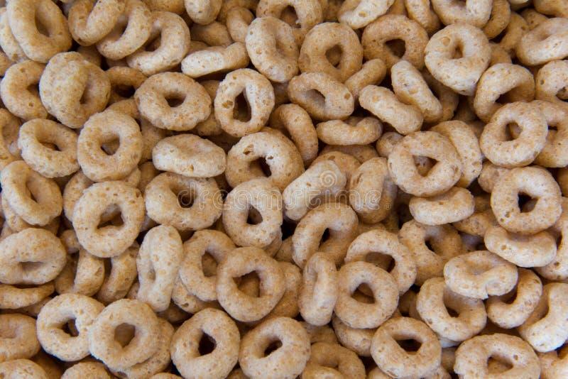 Cereale dell'avena fotografie stock