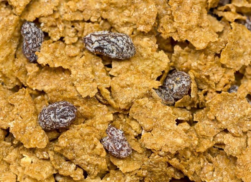 Cereale della crusca fotografia stock libera da diritti