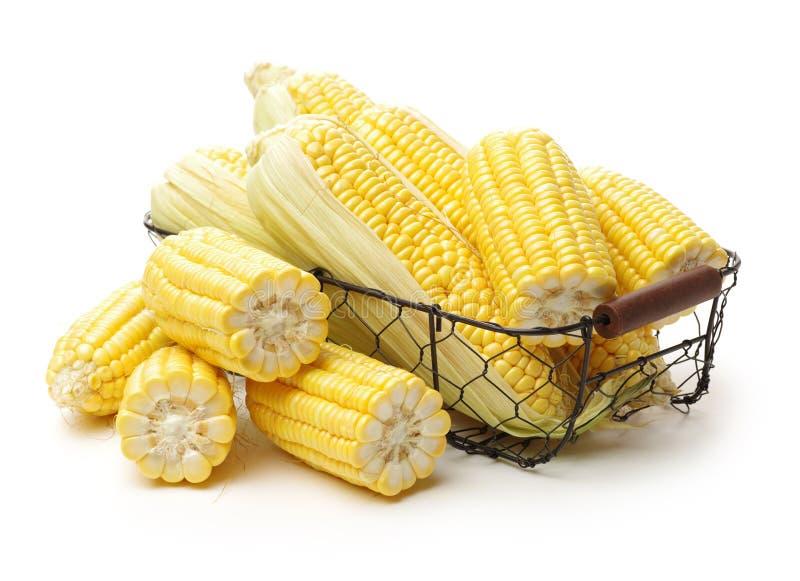 Cereale fresco fotografie stock libere da diritti
