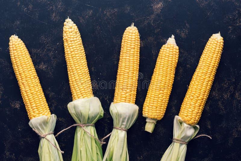 Cereale fresco della pannocchia con le foglie legate su fondo scuro Disposizione piana, vista superiore Alimento vegetariano fotografia stock