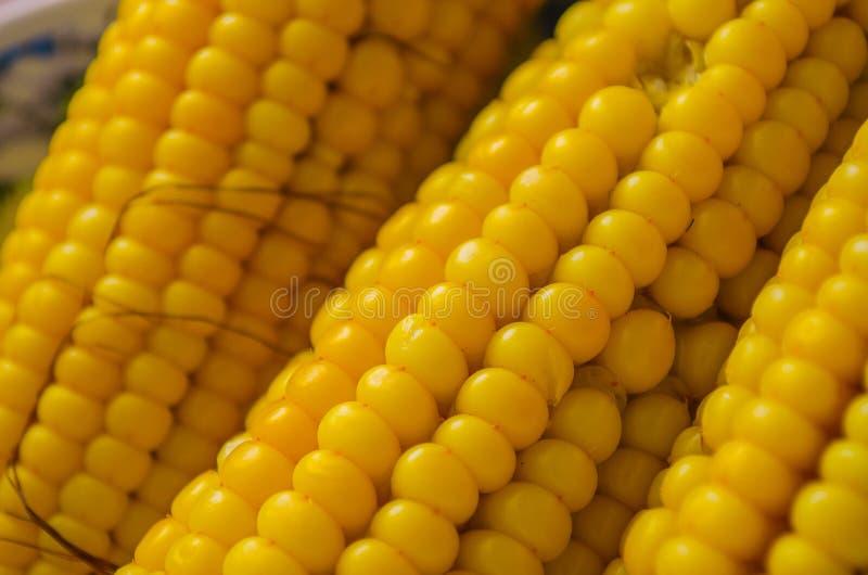 Cereale giallo fotografia stock