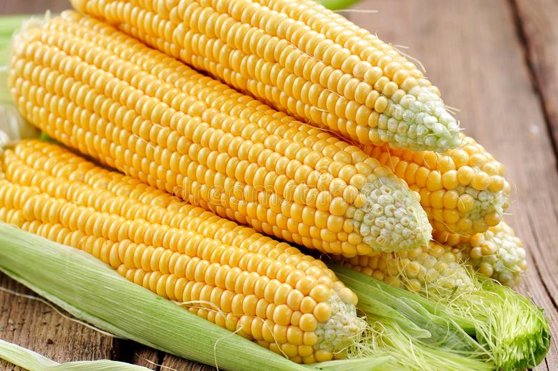 Cereale giallo organico Fondo Alimento squisito immagini stock libere da diritti