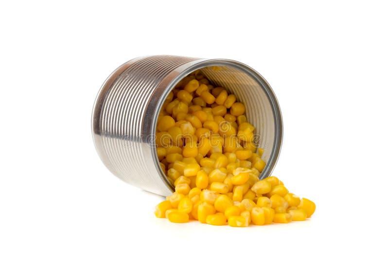 Cereale inscatolato su un fondo bianco immagine stock libera da diritti