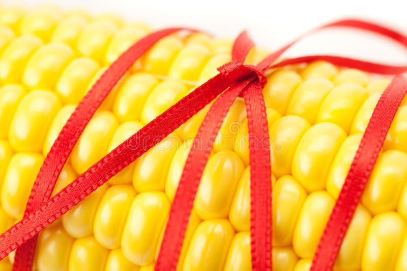 Cereale legato con il nastro fotografia stock libera da diritti