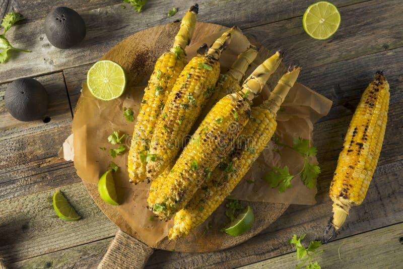 Cereale messicano casalingo arrostito col barbecue della via di Elote immagini stock libere da diritti