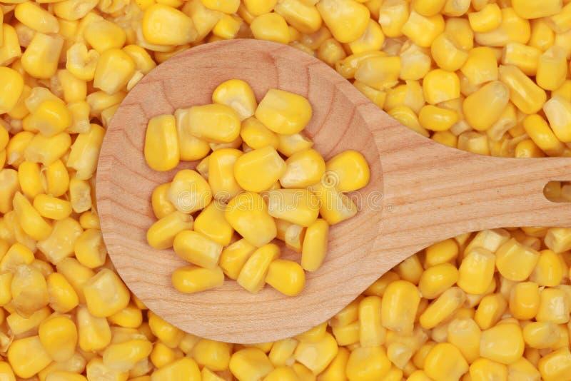 Cereale su un cucchiaio di legno fotografia stock
