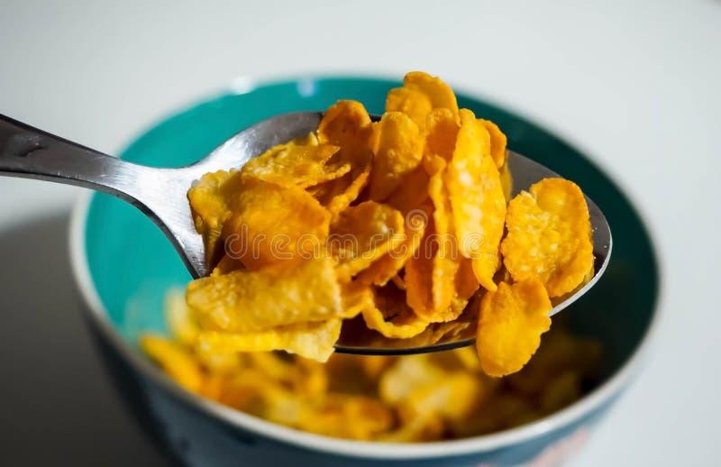 Cereale sul cucchiaio immagini stock libere da diritti