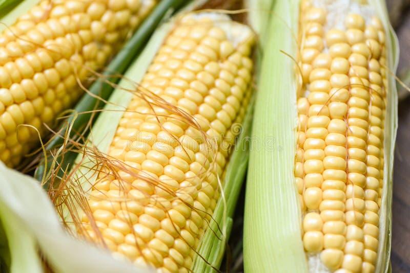 Cereale sulle pannocchie e sulla fine del fondo delle orecchie del mais su fotografia stock