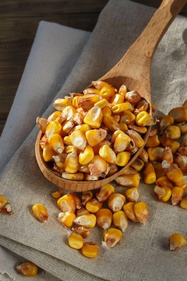 Cereale in un cucchiaio di legno immagine stock libera da diritti