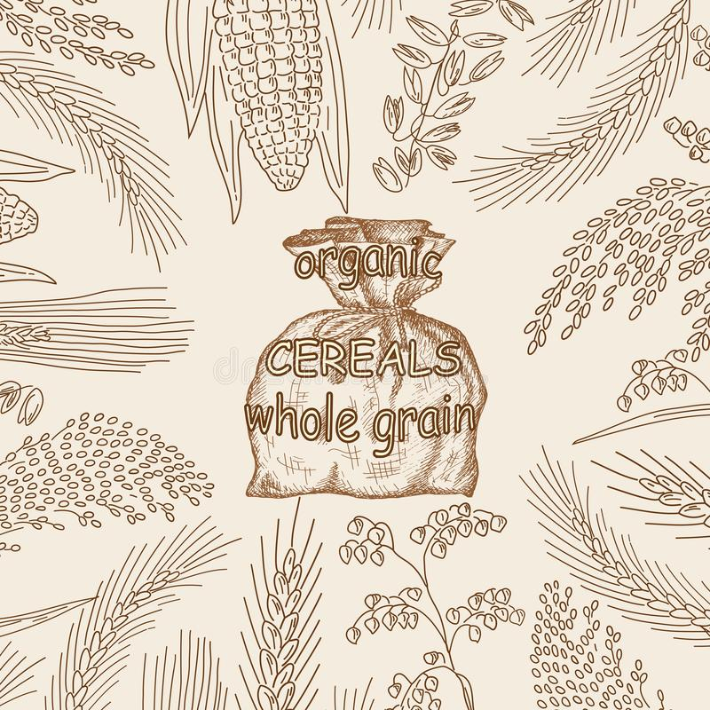 Cereales dibujados mano bosquejados, harina en saco de la arpillera stock de ilustración