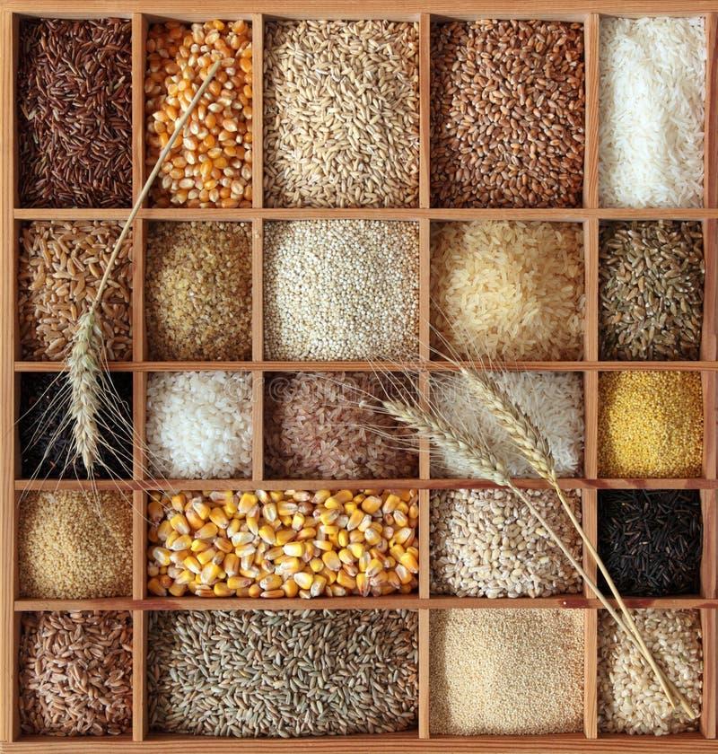 Cereales en rectángulo de madera fotos de archivo libres de regalías