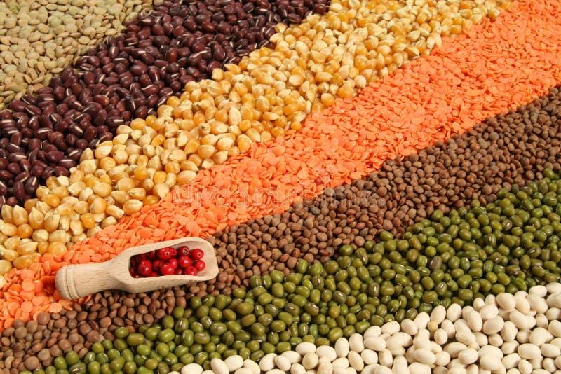 Cereali immagine stock libera da diritti