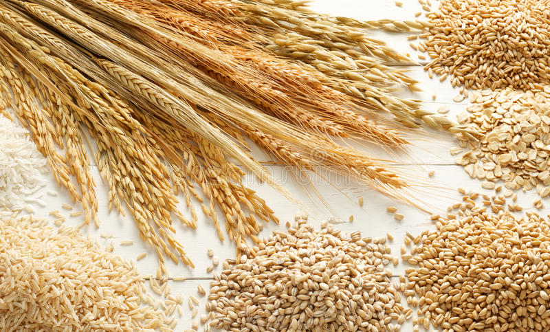 Cereals and grains stock photo