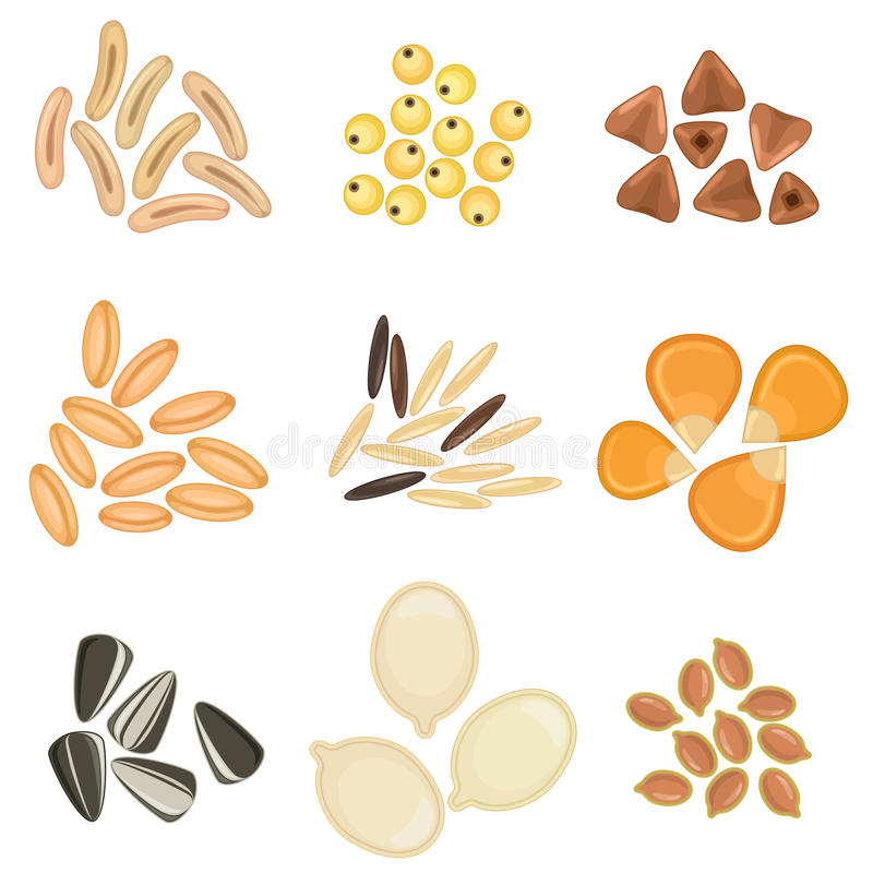 Cereals grains icon set stock illustration