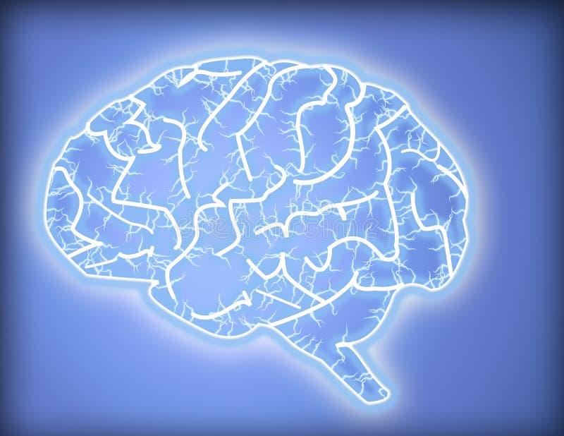 Cerebro stock de ilustración