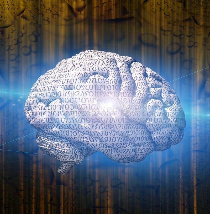 Cerebro binario ilustración del vector