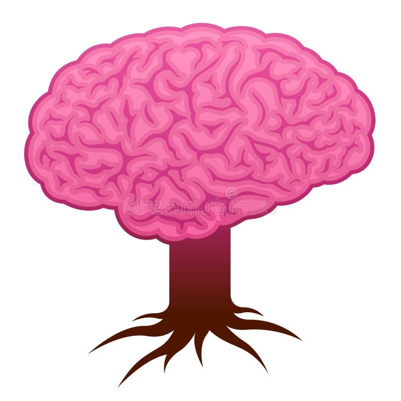 Cerebro con el vástago y las raíces ilustración del vector