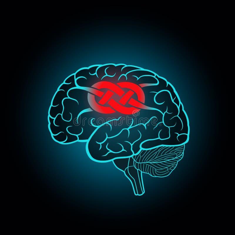 Cerebro con las circunvoluciones asociadas al nudo ilustración del vector
