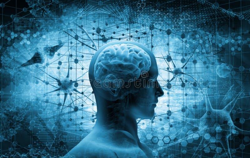 Cerebro, concepto de pensamiento ilustración del vector