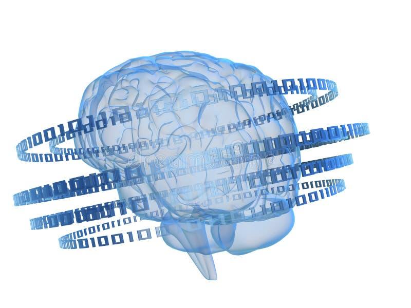 Cerebro de Digitaces ilustración del vector