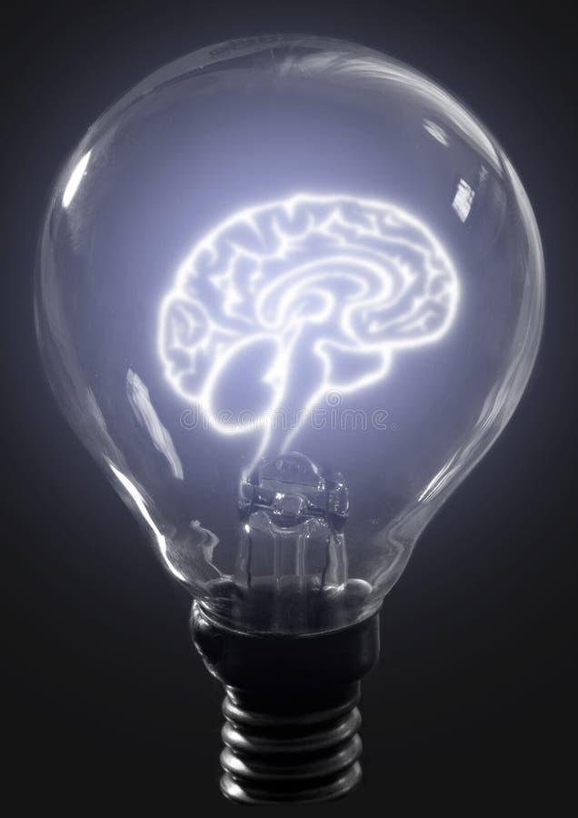 cerebro de la bombilla imágenes de archivo libres de regalías