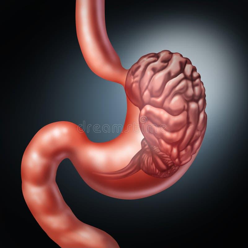 Cerebro del estómago ilustración del vector