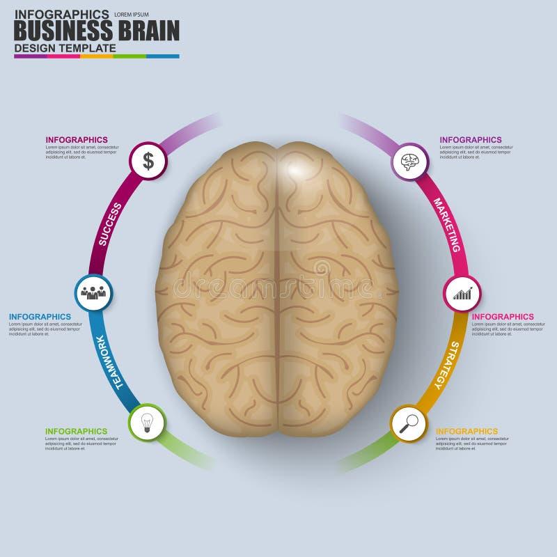 Cerebro digital abstracto Infographic del negocio 3D ilustración del vector