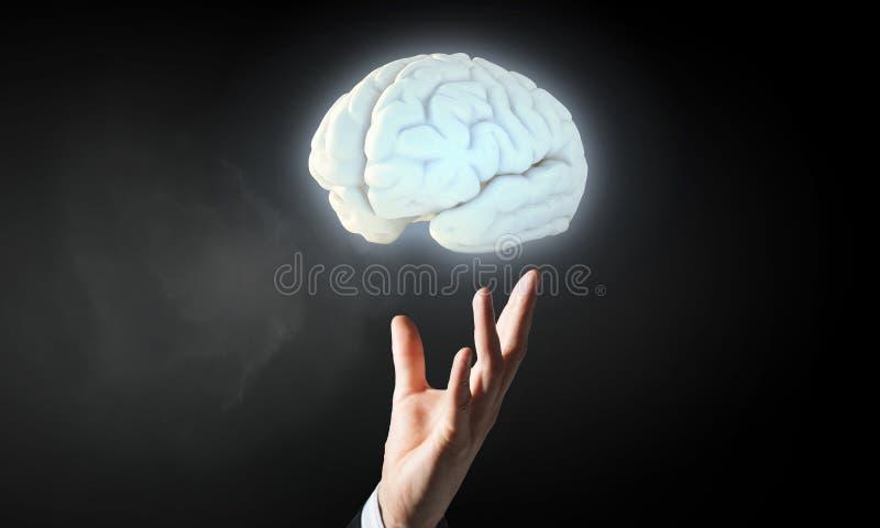 Cerebro en la mano masculina imágenes de archivo libres de regalías
