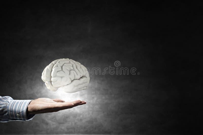 Cerebro en la mano masculina imagen de archivo