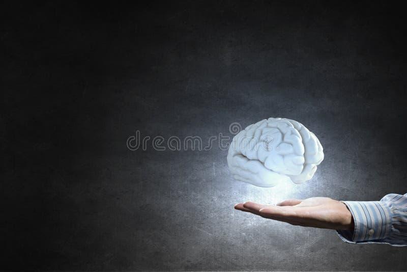 Cerebro en la mano masculina fotografía de archivo libre de regalías