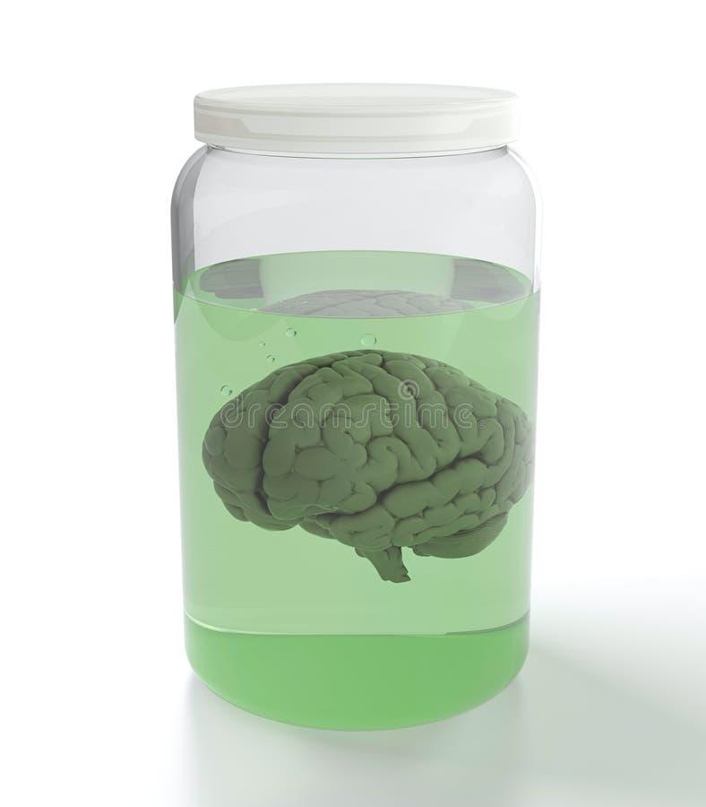 Cerebro en tarro con el líquido ilustración del vector