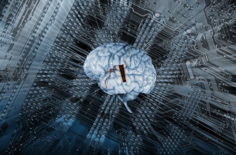 Cerebro humano e inteligencia artificial