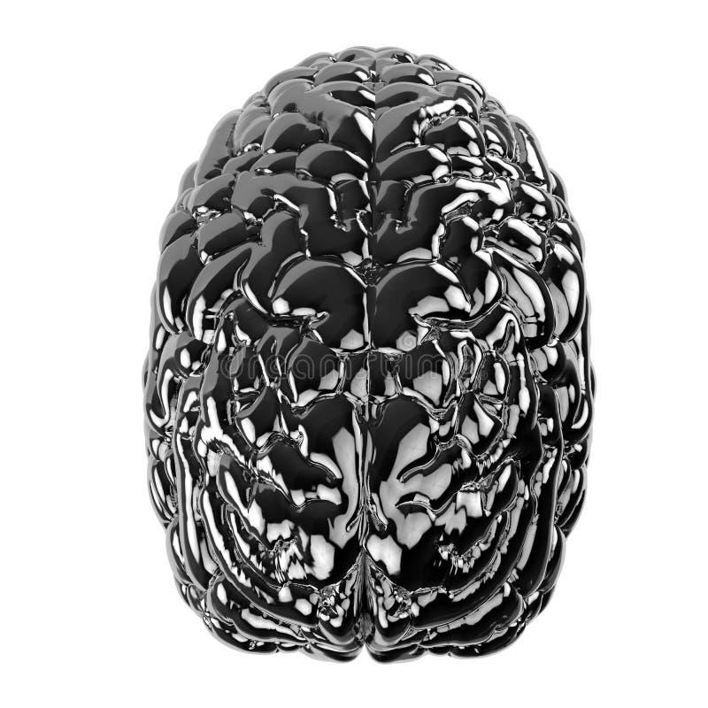 Cerebro humano negro libre illustration