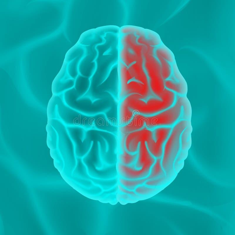 Cerebro humano que brilla intensamente libre illustration