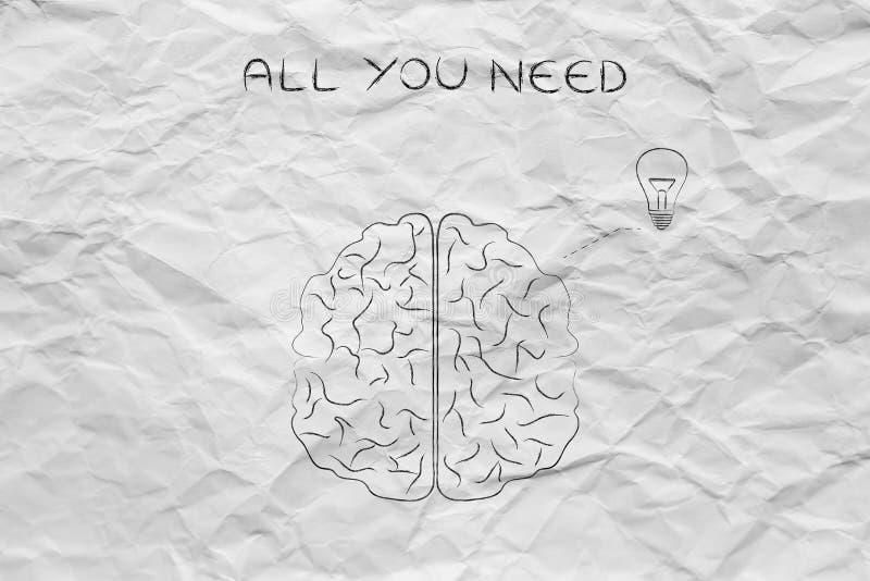 Cerebro humano que tiene una idea (bombilla), toda lo que usted necesita imagenes de archivo
