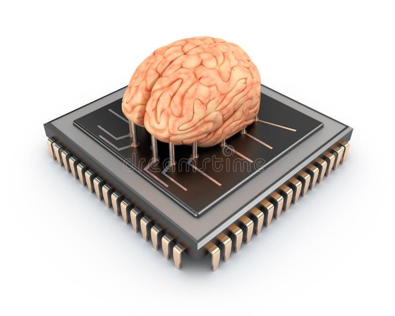 Cerebro humano y chip de ordenador stock de ilustración