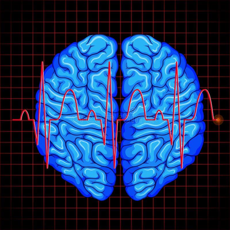 Cerebro humano y gráfico del cerebro en rejillas libre illustration