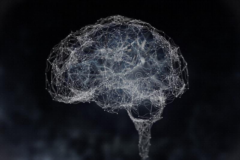 Cerebro humano y sus capacidades Visi?n conceptual - ejemplo 3D libre illustration